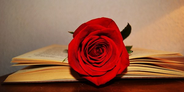 """Presentació del  Llibre """"Sant Jordi - Llibres i Roses"""" - Carme Polo"""