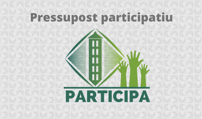La Vall de Boí 2021 - Pressupost Participatiu