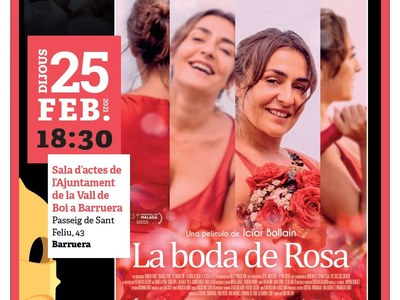 Cicle Gaudi- Pelicula: La Boda de Rosa